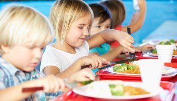 Curso online Certificación en Nutrición Infantil + Salud Deportiva (Doble Titulación + 8 Créditos ECTS)