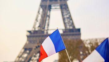 Curso online Experto en Dificultades de Aprendizaje y Planificación de la Formación en Francés para Maestros de Primaria en Francés (Curso Homologado y Baremable en Oposiciones para Maestros de Francés: Doble Titulación + 4 Créditos ECTS)