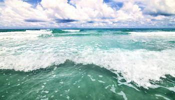 Curso homologado Curso Universitario Homologado de Gestión y Control de la Contaminación del Medioambiente (Titulación Universitaria Homologada + 4 Créditos ECTS)