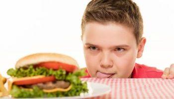 Curso online Experto en Nutrición y Obesidad Infantil para Maestros de Educación Infantil (Curso Homologado y Baremable en Oposiciones para Maestros de Educación Infantil + 4 Créditos ECTS)