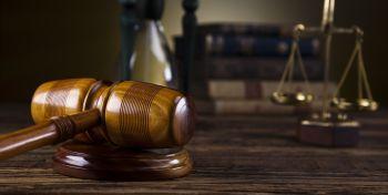 Curso homologado Perito Judicial en Psicología Animal + Titulación Universitaria en Elaboración de Informes Periciales (Doble Titulación + 4 Créditos ECTS)