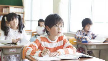 Curso online Experto en Desarrollo Cognitivo en Educación para Maestros de Pedagogía Terapéutica (Curso Homologado y Baremable en Oposiciones de Magisterio de Pedagogía Terapéutica + 4 Créditos ECTS)