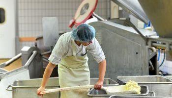 Master en Ingeniería y Control de la Calidad Alimentaria + 60 Créditos ECTS