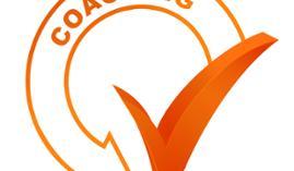 Curso online Máster Europeo en Coaching Pedagógico y Educacional