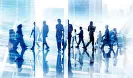 Curso homologado Máster en Docencia de la Formación Profesional para el Empleo + Titulación Universitaria en Orientación Laboral y Promoción de la Calidad en la Formación Profesional para el Empleo