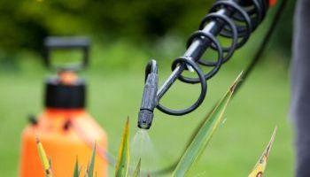 Master en Gestión y Producción Agropecuaria + Titulación Universitaria en Seguridad Alimentaria