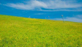 Curso homologado Máster en Medio Ambiente y Gestión Sostenible + Titulación Universitaria en Sostenibilidad Medioambiental