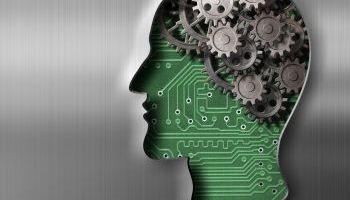 Master en Neurociencia e Inteligencias Múltiples + 60 Créditos ECTS