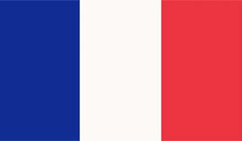 Curso online Experto en Pruebas de Evaluación de las Competencias Educativas en Idioma Francés para Maestros de Primaria Especialidad Francés (Curso Homologado y Baremable en Oposiciones:Doble Titulación + 4 ECTS)