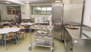 Curso online Técnico Profesional en Nutrición Infantil (Doble Titulación + 4 Créditos ECTS)